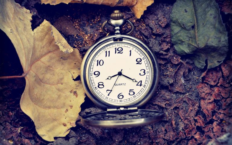 a pocketwatch sitting in leaves